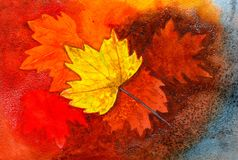 Gefallene Herbstblätter Lizenzfreies Stockbild