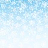 Gefallene Schneeflocken Stockfoto