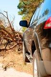 Gefallener Baum auf dem Weg ein großes schwarzes Auto im Wald Lizenzfreies Stockbild