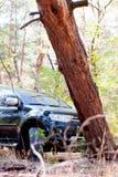 Gefallener Baum auf dem Weg ein großes schwarzes Auto im Wald Lizenzfreie Stockbilder