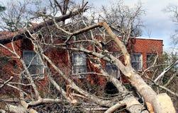 Gefallener Baum auf Ziegelstein-Haus Stockfoto