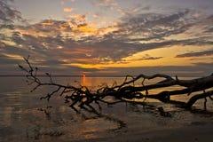 Gefallener Sonnenuntergang Stockfotos