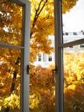 Geöffnetes Fenster und Bäume Stockfotografie
