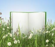Geöffnetes unbelegtes Buch Lizenzfreies Stockbild