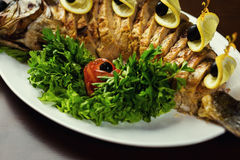 Gefilter Fisch, gefilter Fisch auf der Plattennahaufnahme Köstliches angefüllt Stockfoto