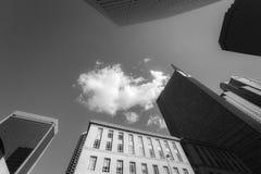 Gefiltreerd beeld die omhoog van horizongebouwen kijken in Dalla van de binnenstad stock foto's