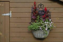 Geflochter Topf mit Blumen auf einer hölzernen Wand lizenzfreies stockbild