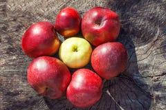 Geformte Äpfel der Blume auf hölzernem Hintergrund Lizenzfreies Stockfoto