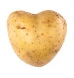 Geformte Kartoffel des Inneren Stockfoto