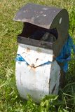 Geformter Müllcontainer des Pinguins Stockfoto