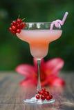 Geformtes Glas mit Cocktail der rosa Pampelmuse auf grünem Hintergrund bokeh Lizenzfreie Stockfotos