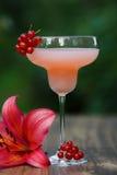 Geformtes Glas mit Cocktail der rosa Pampelmuse auf grünem Hintergrund bokeh Stockbilder