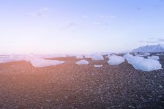 Gefrieren Sie auf schwarzem kleinem Vulkanstrand, Island Stockfotografie