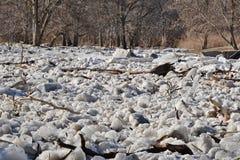 Gefrieren Sie Stau auf Humber-Fluss am ersten Wehr stockfotografie