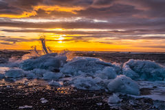 Gefriert auf dem Strand bei Jokulsarlon in Südost-Island Lizenzfreies Stockbild