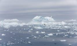 Gefriert und Eisberge von Polarregionen von Erde Stockbilder