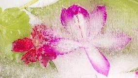 Gefrorene Abstraktion mit hellen Farben Stockfotos