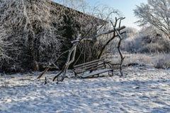 Gefrorene Bäume und altes Bankschwingen Stockbild