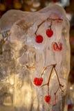 Gefrorene Beeren Stockfotos