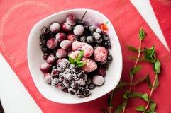 Gefrorene Beeren auf Platte mit einem Bündel der Minze Stockfotografie