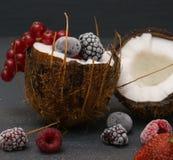 Gefrorene Beeren der Kokosnuss innerhalb der Himbeerblaubeeren lizenzfreie stockbilder
