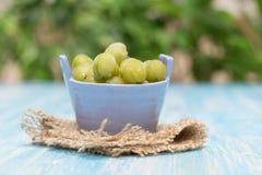 Gefrorene Beerenstachelbeeren in einer Schüssel Glas auf Weinlesetabelle lizenzfreies stockfoto