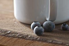 Gefrorene blueberrys Lizenzfreie Stockbilder
