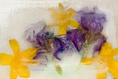 Gefrorene Blume von Iris Stockfotos