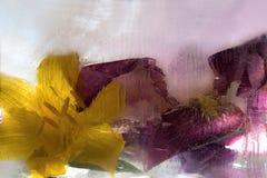 Gefrorene Blume von Iris Stockbilder