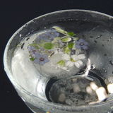 Gefrorene Blumen in einem Vase Glas mit Wasser fällt auf einen schwarzen Hintergrund Stockfotos