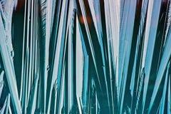 Gefrorene Eis-Schicht - Makro lizenzfreie stockbilder