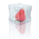 Gefrorene Erdbeere Lizenzfreies Stockfoto