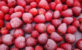 Gefrorene Erdbeeren Stockfoto