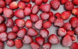 Gefrorene Erdbeeren Lizenzfreies Stockfoto