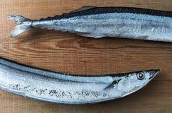 Gefrorene Fische pazifischer Makrelenhecht auf einem hölzernen Brett Stockfoto
