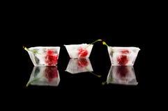 Gefrorene Früchte Stockbild