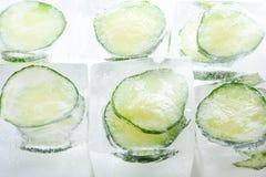 Gefrorene Gurkenscheiben in den Eiswürfeln Lizenzfreies Stockfoto