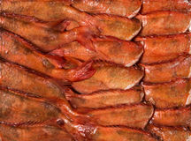 Gefrorene Karkassenfische im Ziegelstein für Handel und Hintergrund Lizenzfreies Stockfoto