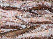 Gefrorene Karkassenfische im Ziegelstein für Handel und Hintergrund Stockbild