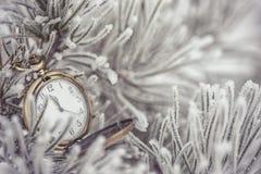 Gefrorene Koniferenniederlassungen mit Taschenuhr im weißen Winter, im Winter- und guten Rutsch ins Neue Jahr-Hintergrund Lizenzfreie Stockfotos