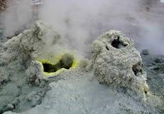 Gefrorene Lava des Vulkans Der Dampf von den Geysiren Tal der Geysire Kronotsky-Zustands-Naturreservat Halbinsel Kamtschatka lizenzfreie stockbilder