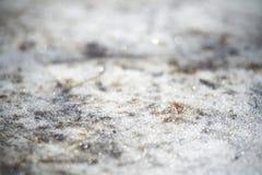 Gefrorene Metalloberfläche Stockfotos