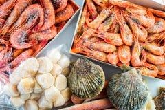 Gefrorene Oberteile der Kamm-Muschel, der Garnelen und der Krabben Stockfoto
