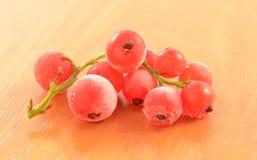 Gefrorene rote Johannisbeere Stockfoto