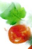 Gefrorene Tomate Stockfoto