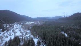 Gefrorene Wildnis in Alaska stock video footage