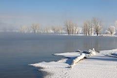 Gefrorene Winter-Bäume auf einem See lizenzfreies stockfoto