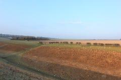 Gefrorene Winterlandschaft mit dem Weiden lassen von Schafen Stockbild