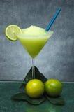 Gefrorene Zitrone Stockfotos