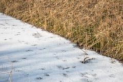 Gefrorener Abzugsgraben bedeckt mit Eis und Schnee Stockfotos